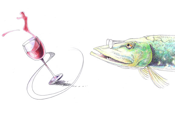 illustration_buch_3